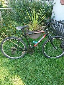 velo montagne supercycle 18 vitesse bonne condition