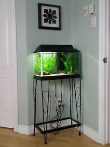 Aquarium avec base 10 gallons / 10 gallon aquarium & stand
