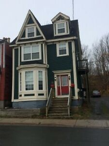 Charming 1 Bedroom Downtown Apartment St. John's Newfoundland image 3