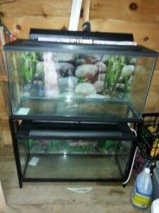 2 x 35g fish tanks
