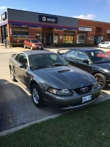 Ford Mustang gt sporty and fun to drive!!!!!