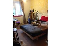 Short Term - Double room available in flat share - 5 months only