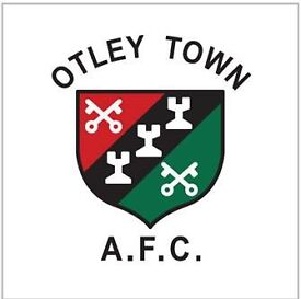 Photographer wanted for Otley Town