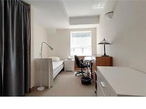 1 Room available in a 5 bedroom apt - 1/2 months - Dec/Jan only Kitchener / Waterloo Kitchener Area image 2