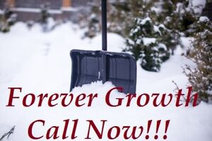 $40 SNOW REMOVAL SERVICE!!! CALL NOW!! 416-564-5977