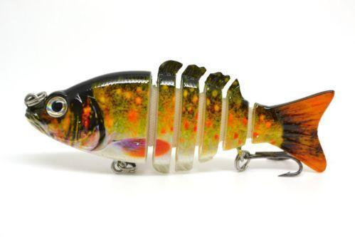 Live bluegill ebay for Bluegill fish tank