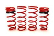92-95 Civic lowering Springs