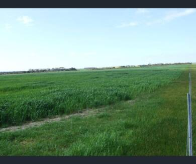 250 acres, lovely lifestyle block, or for cropping/grazing