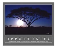 It's Opportunity Time!
