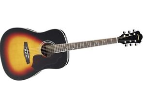 Ibanez SGT520 SAGE SERIES Acoustic Guitar with soft case