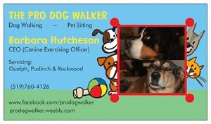 THE PRO DOGWALKER-EXECUTIVE PET SITTING SERVICE