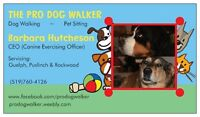 Seeking another awesome dog walker to join our team!