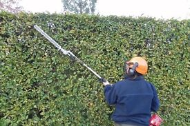 Grass cutting hedge trimming tree cutting general maintenance jungles cleared