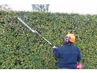 Grass cutting hedge cutting all garden maintenance