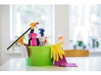Profesional cleaning
