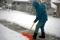 Shovelers for Snow removal wanted-