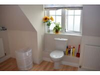 Large ENSUITE Double Room available to rent at Worcester Park