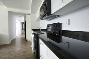 Room Available in 4 Bedroom Apartment (4-8 month sublet)