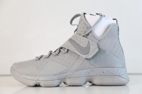 d078ec11db Nike Lebron XIV 14 Mens 10-14 Silver White Reflective Grey James 852405-007