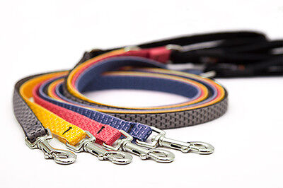 (Small Dog Leash by Lupine Made from Recycled Plastic - 9 Nature Inspired Colors)