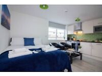 Nice studio to rent in Colindale-Kingsbury Nw9-Part DSS accept