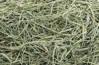 ISO - Timothy Hay Bales for pet rabbits/guinea pigs
