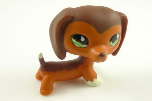 Shop for littlest pet shop at Best Buy. Find low everyday prices and buy online for delivery or in-store pick-up. advertisement. Skip to content. Weekly Ad; Deal of the Day; Hottest Deals. Great deals happening right now. Weekly Ad. This week's best deals, all in one place. Deal of the Day. Great deals.