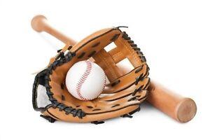 donations of children's/kid's baseball gloves