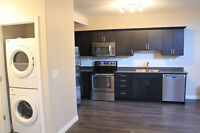 NEW 2 Bedroom Basement Suite with Garage- Avail July 1
