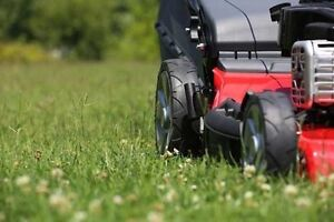 Mowing and gardening Epping Ryde Area Preview