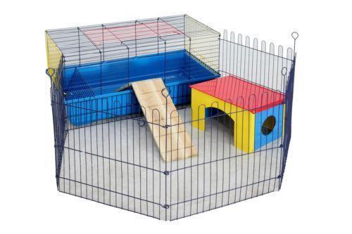 Best Indoor Dog Toys