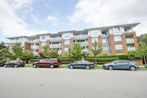 Brentwood Park Condo for sale: Collage 2 bedroom