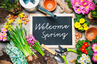 Spring Clean-Up for your Garden