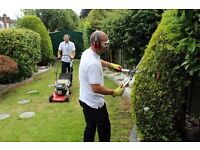 Garden Maintenance ( Burnt Oak - Edgware )