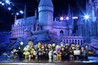 Harry Potter Beast Harry Potter LEGO Minifigures