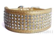 Gold Rhinestone Dog Collar