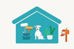 House Sitting & Animal Sitting