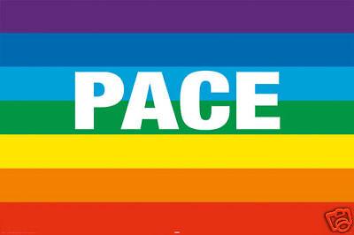 Poster PACE (Regenbogen) - Flag  ca90x60cm NEU (56980)