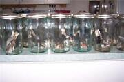 Fowlers Jars