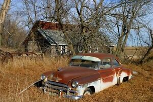 farm needing attention? or need junk removed call London Ontario image 10
