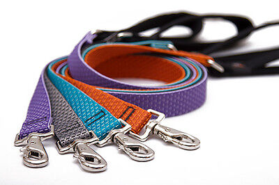 (Large Dog Leash by Lupine Made from Recycled Plastic - 9 Nature Inspired Colors)