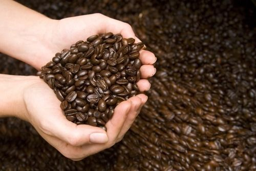 Mexican Oaxaca Coffee Whole Beans Gourmet Medium Roasted Daily 2 - 1 Pound Bags 3