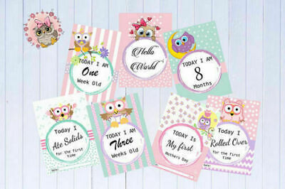 Baby Milestone Cards Owl Theme Pink Girls Pack of 30 Cards Baby Shower 6