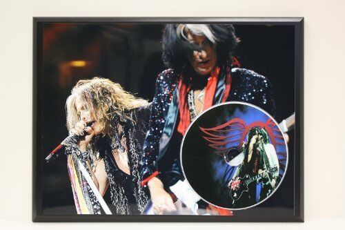 Aerosmith Limited Edition Picture Disc CD Rare Collectible Music Display