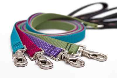 (Medium Dog Leash by Lupine Made from Recycled Plastic - 9 Nature Inspired Colors)