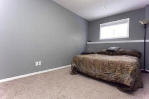 Two bedrooms available For Rent  -  Available May 1st.