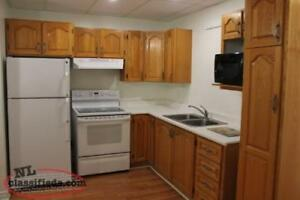 Small one bedroom basement apt for rent with l/h included