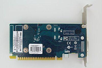 NEW PNY NVIDIA GeForce 1GB DDR3 SDRAM PCI Express Graphic Card