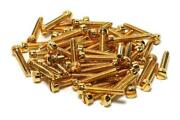 Gold Humbucker Screws