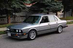 Looking for a Bmw E28
